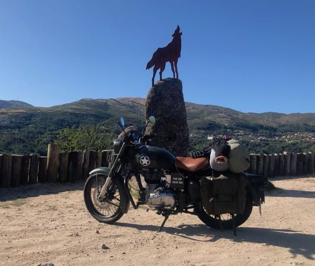 royal enfield y lobo